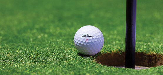 Southend Garons Golf