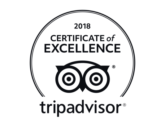 Trip Advisor 2018 Excellence Award logo