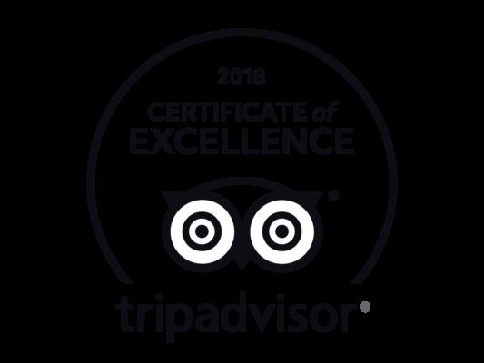 Trip Advisor 2018 Excellence Award logo